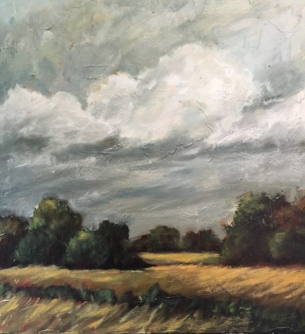 Grey clouds rolling over amber fields